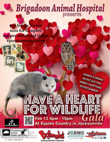 biddingowl possumwood acres wildlife sanctuary auction
